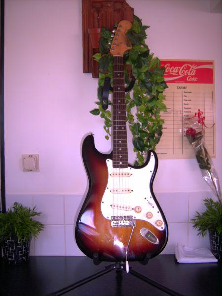 fer%2525201_01 japan vintage guitars  at bakdesigns.co